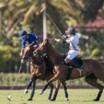 Casa de Campo y Lechuza Caracas son los finalistas de la Copa de Plata