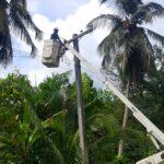 Reportan normalización servicio eléctrico en Las Terrenas y Las Galeras de Samaná